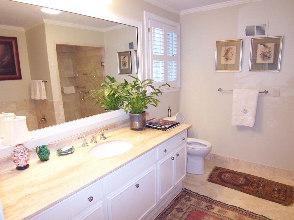 Brookhaven-Bathroom-Paces-Construction-Atlanta