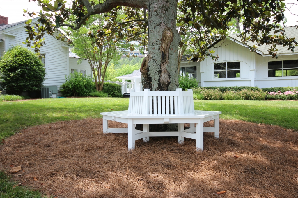 Vinings-Tree-Bench